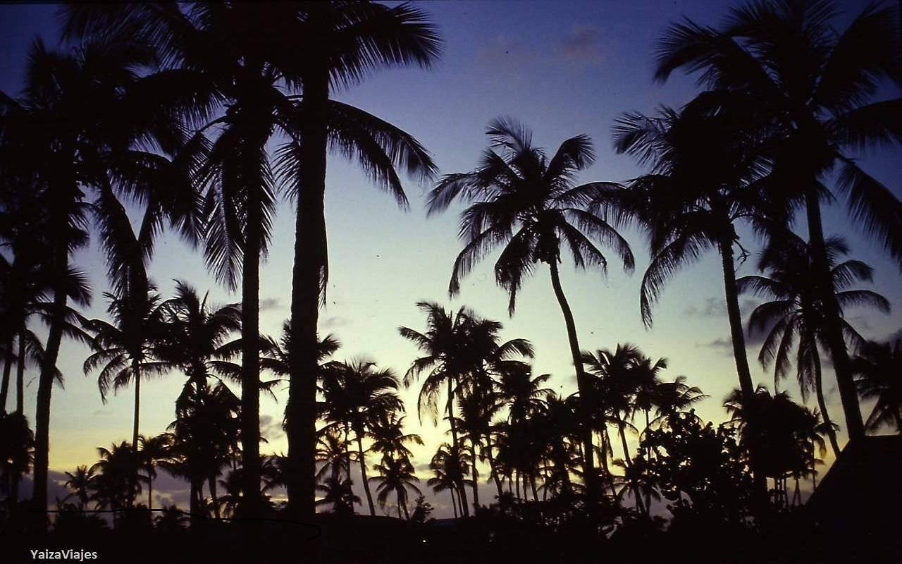 Caribe. Yaiza Viajes