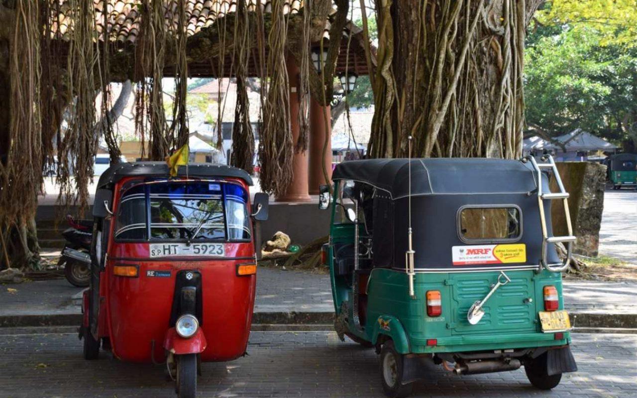 India Grandes Viajes