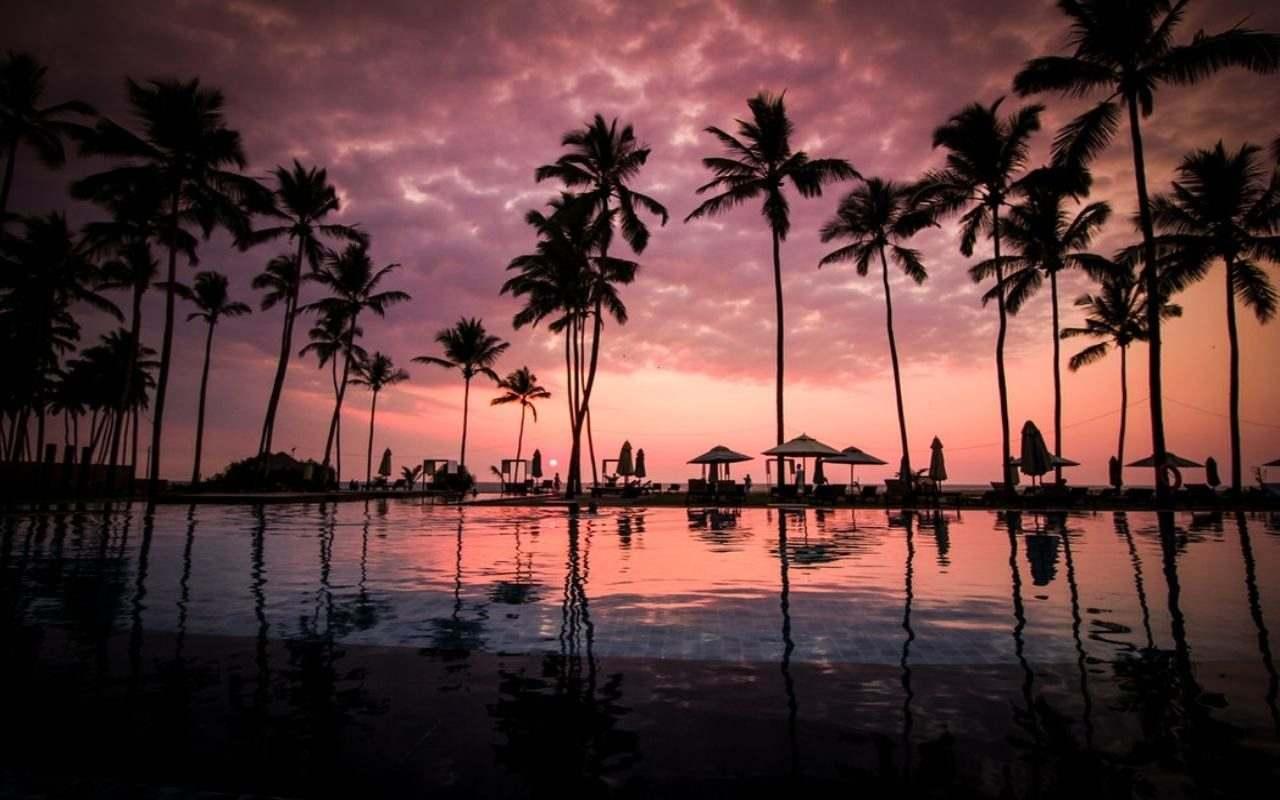 Sri Lanka. Viajes de Novios